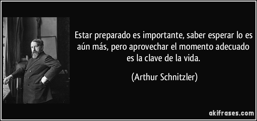 frase-estar-preparado-es-importante-saber-esperar-lo-es-aun-mas-pero-aprovechar-el-momento-adecuado-arthur-schnitzler-129618