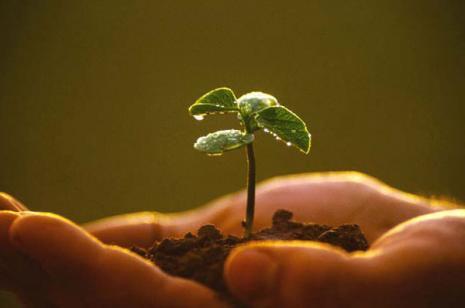 agroecologia-unica-esperanza-para-la-soberania-alimentaria-y-la-resiliencia-socioecologica_article_full_l